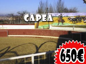 Capea en Logroño 650€