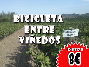 Bicicleta entre viñedos